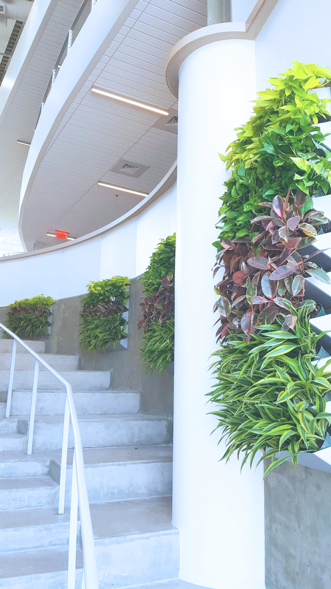 Living Wall Stair Displays