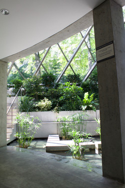 Interior Lanscaping