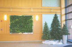 Holiday Interior