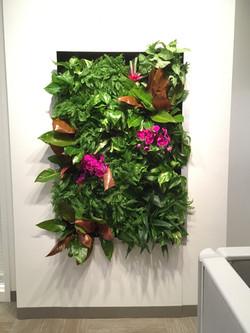 Living Wall Reception Display