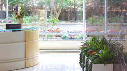 Interior Planter Display