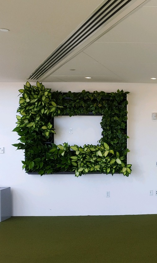 Living Wall TV Frame