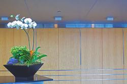 Interior Lobby Display