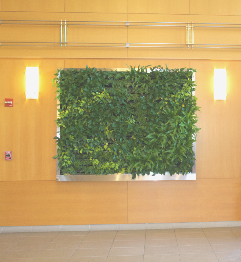 Living Wall Lobby Display