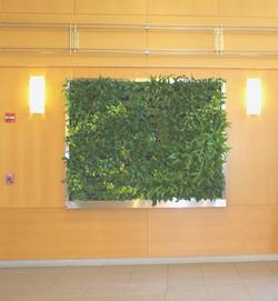 Living Wall Lobby Display