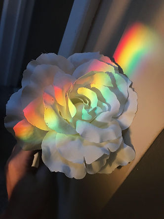 rainbowflower.jpg