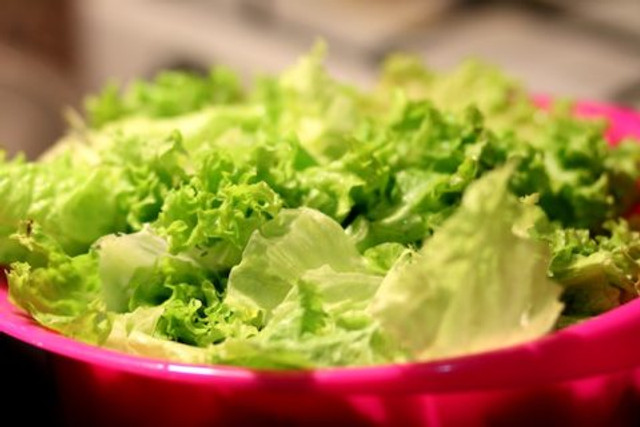 Lettuce low calorie foods - Breath And Beats