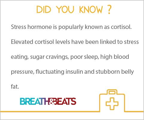 Stress Hormone Cortisol Health Infographics