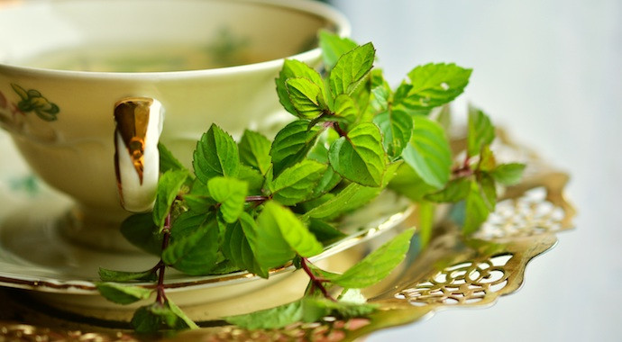 Peppermint teas for weight loss