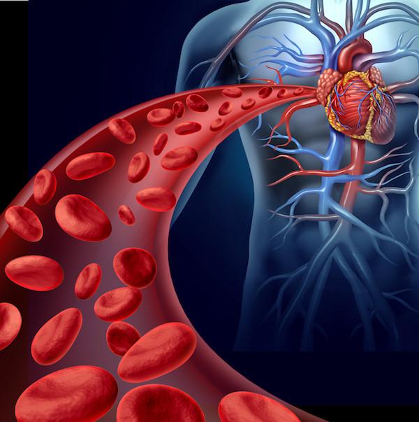 Heart Valve Disease - Breath And Beats