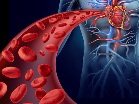 Heart Valve Disease Causes Disruption In Your Blood Flow