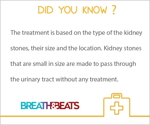 Kidney Stones Treatment Health And Medical Infographic