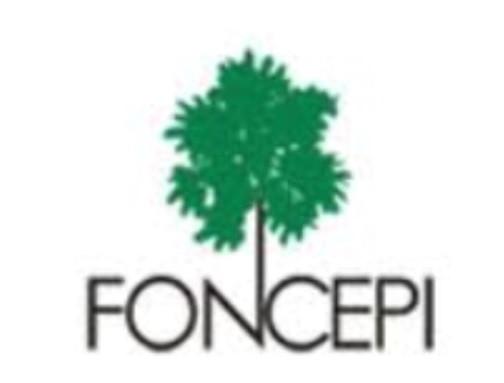 FONCEPI.jpg