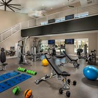 terrano gym 1.jpg