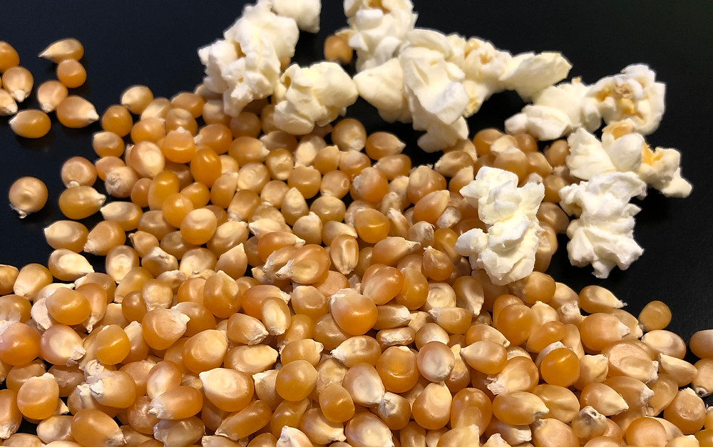 Premium butterfly popcorn expansion 40/42