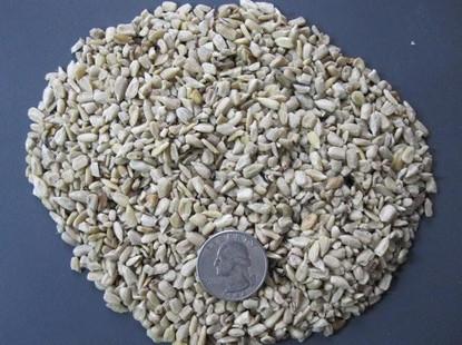 Sunflower kernel chips - Medium.jpg