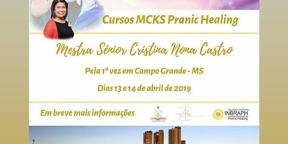 Cursos Especiais com a Mestra Sênior Cristina Nona de Castro