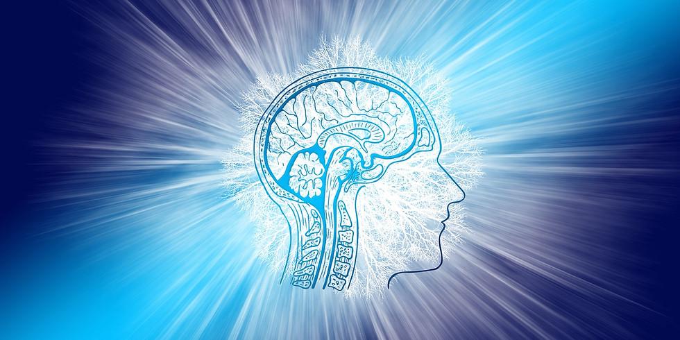 Taubaté - Super Brain Yoga