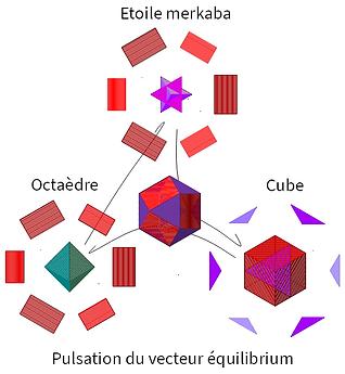 Pulsation_vecteur_équilibrium.bmp