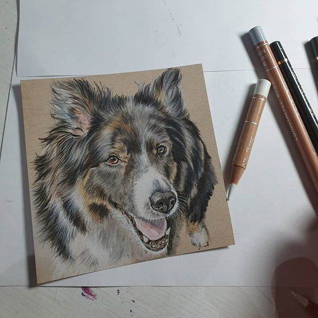 Loved drawing this gorgeous girl 😍😍🐾���