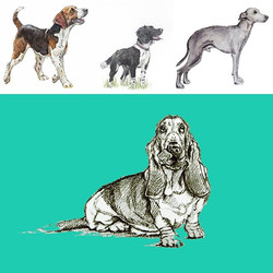 My favourite prints which work superbly on fabric! _keylimedesign what do you think_ #crazydoglady #