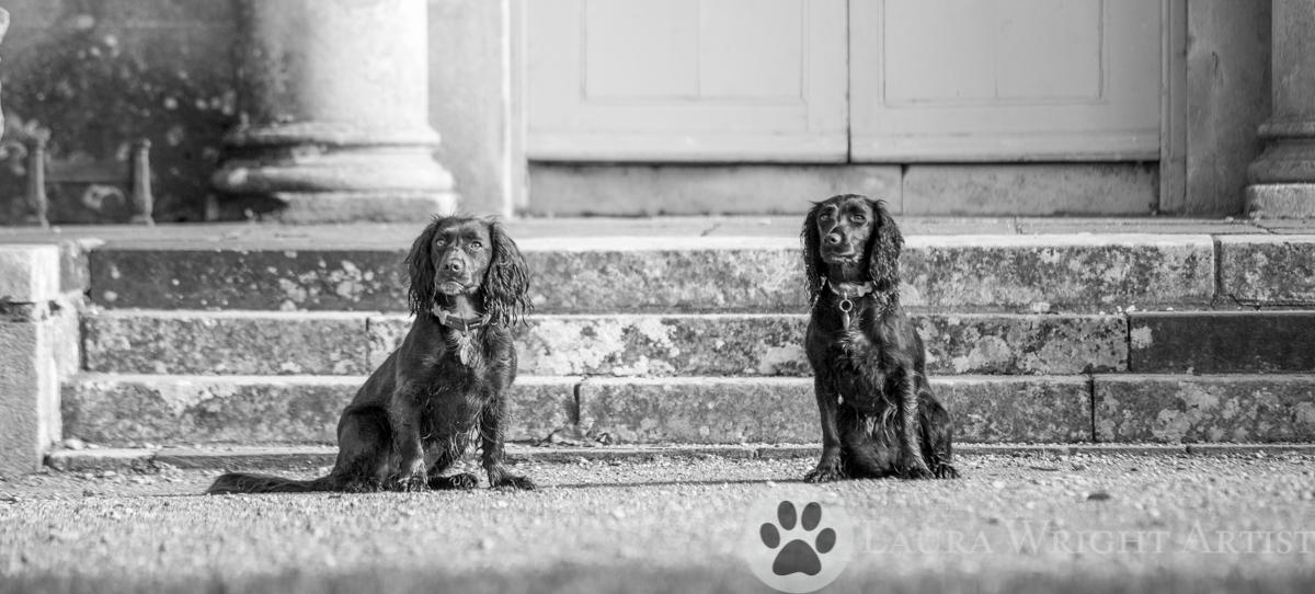 Molly and Pippa-17