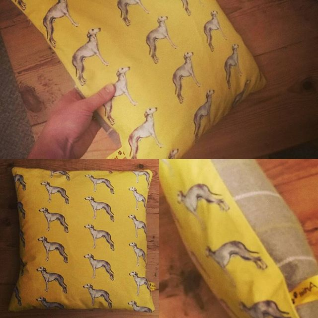 So pleased with my first sewing creation!  Fabric from my own design, #whippet #sewingnovice #printm