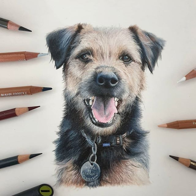 Wilbur #colourpencilartists #colouredpen
