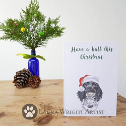 Christmas cards are now in stock! Link i