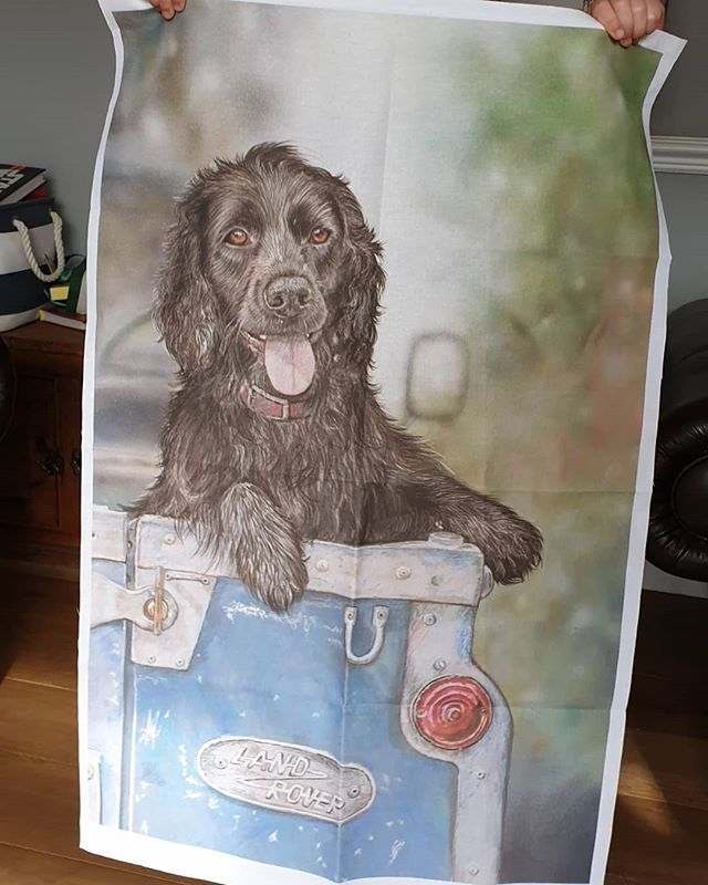 Doesn't Jack the spaniel look awesome on