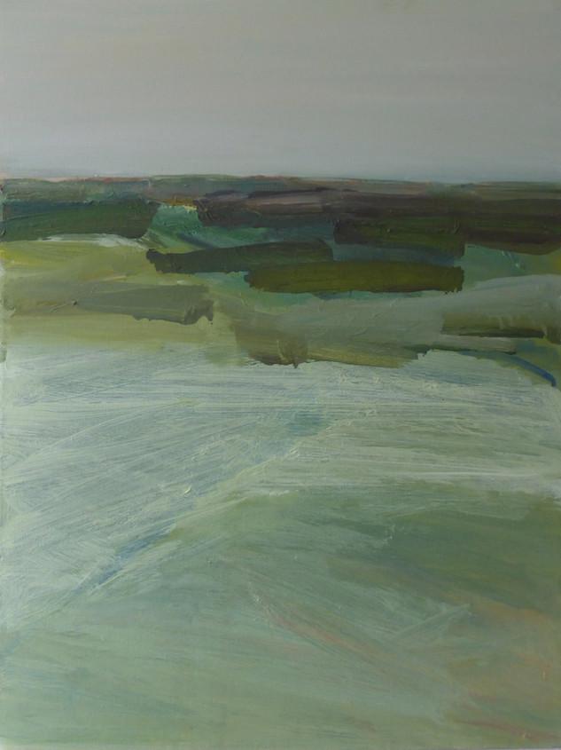 Olie op doek 50 x 70, 2014 (verkocht)