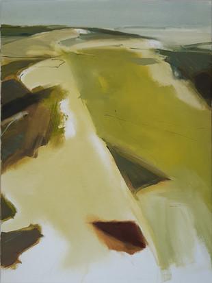 Olieverf op doek, 60 x 80, 2020 (verkocht)