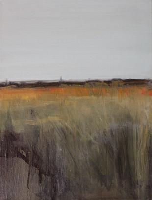 Olie op doek 30 x 40, 2014 (verkocht)