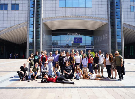 "FYCA young activists attended ""Let's go online"" TC in Belgium!"