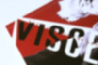 VISCERAL3b.jpg