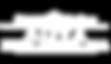 New logo adva - white.png