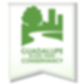 guadalupe-river-park-conservancy-1.png