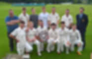 Saintfield Cricket