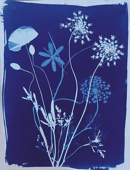 Bouquet de fleurs des champs n° 1