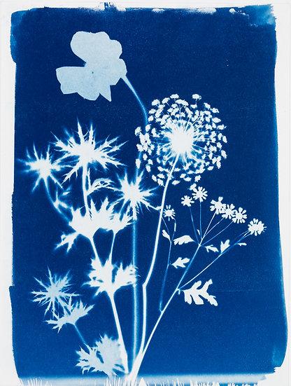 Bouquet de fleurs des champs 14
