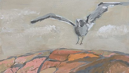 Suzanne G. Roberts, Coming in for a landing, gouche, 6x6