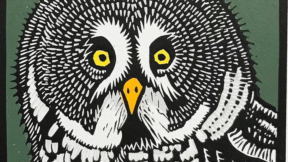 Leslie Moore, Great Grey Owl, linocut, 10x10 (frame size)