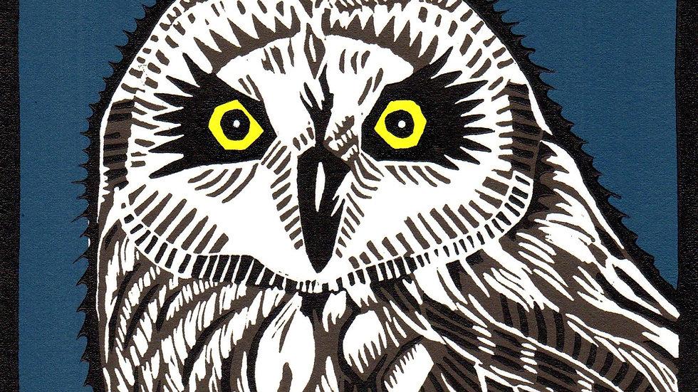 Leslie Moore, Short Earred Owl, linocut, 10x10 (frame size)