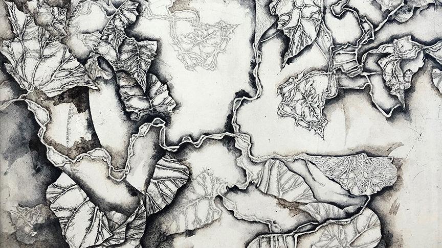 MF Morison, Trellis, etching, 13.5x13.5