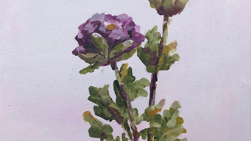 Judy Graebert, Duo, acrylic, 10x10
