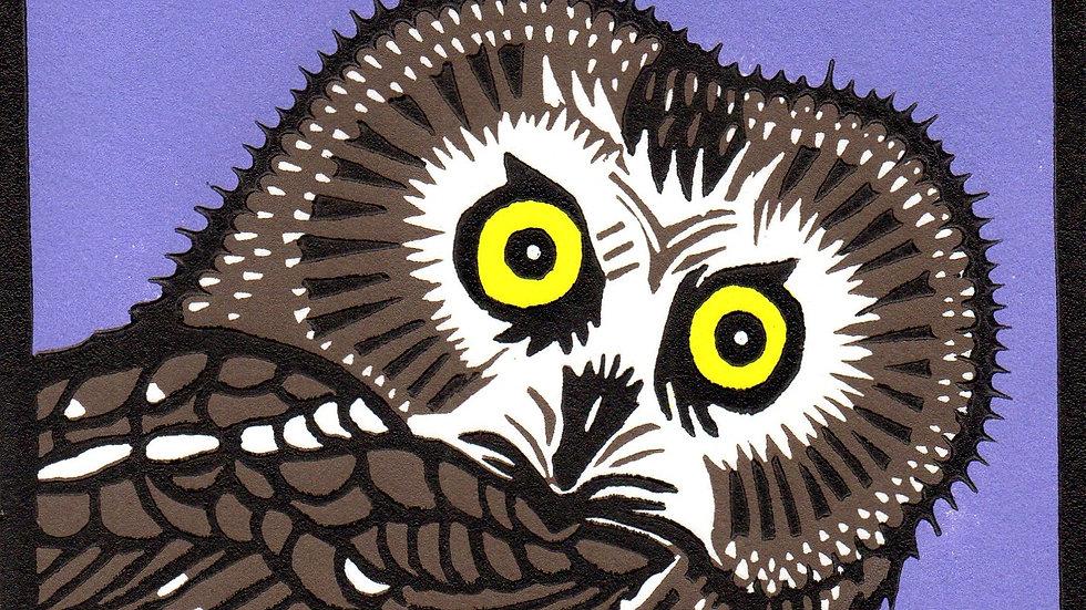 Leslie Moore, Saw Whet Owl, linocut, 10x10 (frame size)
