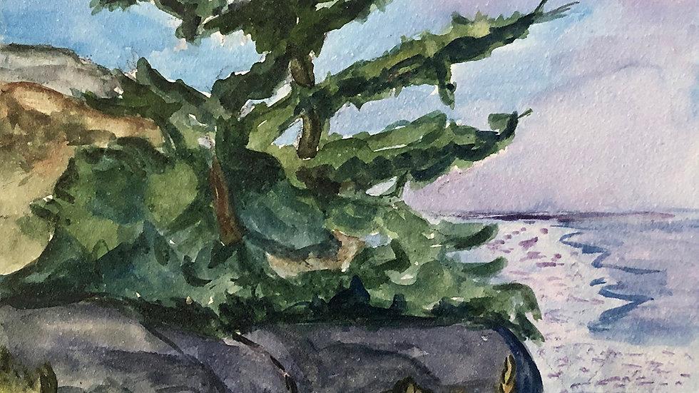 James Toothacker, Overlooking, watercolor clayboard, 7x7framed