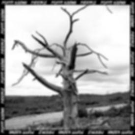 PATIENCE EP ARTWORK -FINAL .jpg