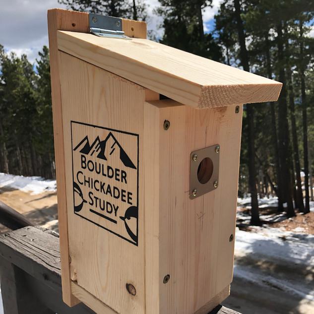 Boulder Chickadee Study nestbox