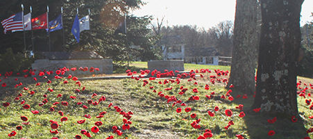 PoppiesAndMemorial-Adj.jpg